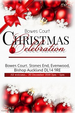 Bowes Court Christmas Celebrations...